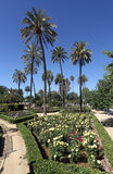 Park in Seville, Andalusia, Spain Stock Photo