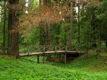 Park in Shchelykovo Royalty-vrije Stock Afbeeldingen