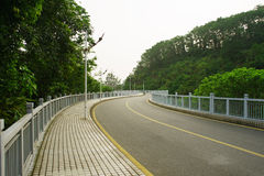 Park in ShenZhen Royalty Free Stock Photo