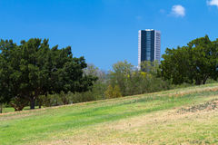 Park and skyscraper Royalty Free Stock Photography