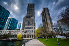 Park and skyscrapers at the Harbourfront in Toronto, Ontario. Royalty Free Stock Photo