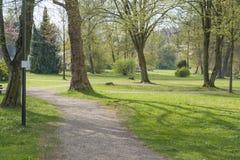 Park in Slechte Brueckenau stock foto