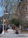 Park Slope, Brooklyn, New York City, USA stock image