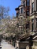 Park Slope, Brooklyn, New York City, USA royalty free stock photos