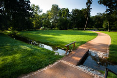 Park with small road and stream. Summer morning in a park with road going across a small river via bridge stock image