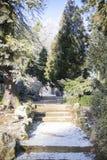 Park in sneeuw wordt behandeld die Royalty-vrije Stock Afbeelding