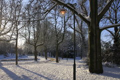 Park in the snow royalty free stock images