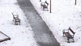 Park snow falling stock footage