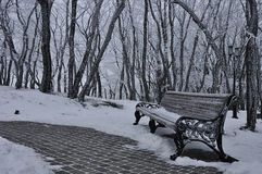Park in the snow in the winter. The photo was taken in the Spa town of Pyatigorsk on a grief Mashuk Royalty Free Stock Photos