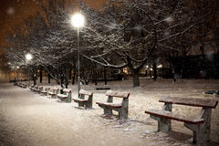 Park in a snowfall Stock Images