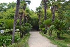 Park Sochumi, Abchasien lizenzfreie stockbilder