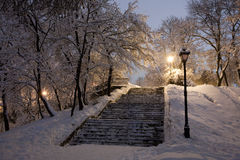 Park som räknas med snow på natten. Arkivbild