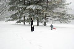 park som sledding Arkivbild