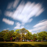 Park in Sopot. Poland; long exposure Royalty Free Stock Photography