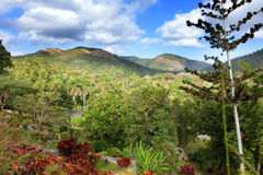 Park Soroa w słonecznym dniu, Kuba (Jardin Botanico Orquideario Soroa) Zdjęcia Stock