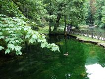 Park and source of Bosna River royalty free stock image