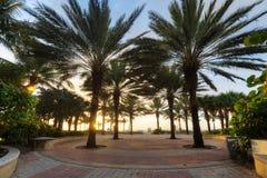 Park in South Beach, Miami Stock Photo