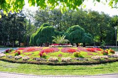 Park. In the spa Vrnjacka Banja Royalty Free Stock Image