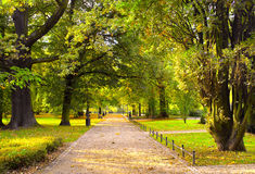 Park in spring time Royalty Free Stock Image