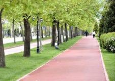 Park in spring Stock Photo