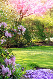 Park in springtime Royalty Free Stock Images