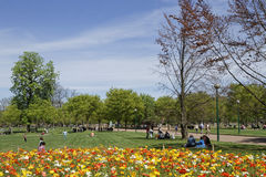Park in the Springtime Stock Images