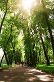 Park in St. Petersburg Royalty Free Stock Image
