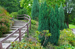 Park with stairs and shrubs Royalty Free Stock Photography