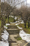 Park stairway in spring season Royalty Free Stock Photos