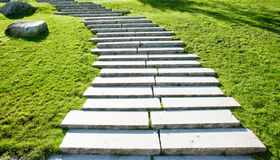 Park steps Royalty Free Stock Photo