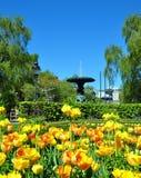 Park in Stockholm Stockbild