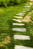 The park, stone paved road, there are green plants Stock Images