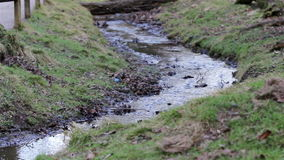 Park Stream with moss and grass - Beautiful English Countryside Nature Backgrounds stock footage