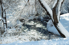 park and stream in winter snow Stock Photography