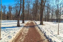 Park in the suburbs of St. Petersburg on a winter sunny day stock photo