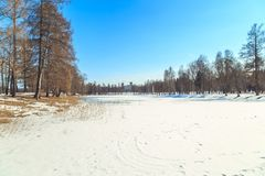 Park in the suburbs of St. Petersburg on a winter sunny day stock image