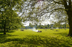 Park in summer Stock Image