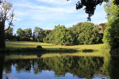 Park. At a summer evening Royalty Free Stock Images