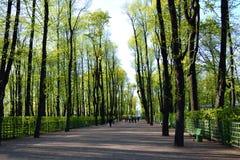 Park Summer Garden in St.Petersburg. Royalty Free Stock Photos