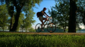 Park on a sunny day with bike crossing. The idyllic scene stock video