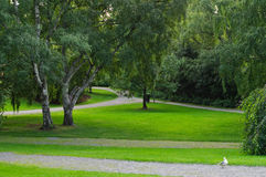 Park in Tampere. Green park and paths in Tampere Finland Royalty Free Stock Images