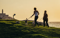 Park in Tel Aviv. Tel Aviv, Israel - October 21, 2015. Two women walks with dogs in small park. View with Jaffa also called Japho or Joppa, former port city, now Royalty Free Stock Photos