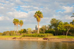 Park in Tel Aviv Royalty Free Stock Photo