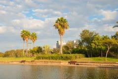 Park in Tel Aviv Royalty Free Stock Photo