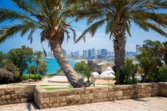 Park in Tel-Aviv. Tel-Aviv view from the old to the new town stock image
