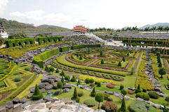 Park in Thailand. Park nong nooch in Thailand stock photography