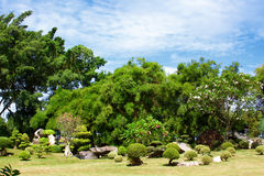 Park in Thailand. Royalty Free Stock Photo