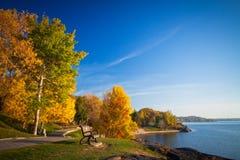 Park tijdens Autumn Season Royalty-vrije Stock Fotografie