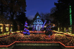 Park and Tilford Gardens Christmas Lights Stock Images