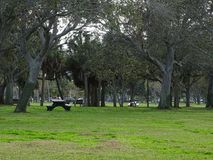 Park to enjoy with the family. Family activities at home enjoy the time with your family quotes stock photography